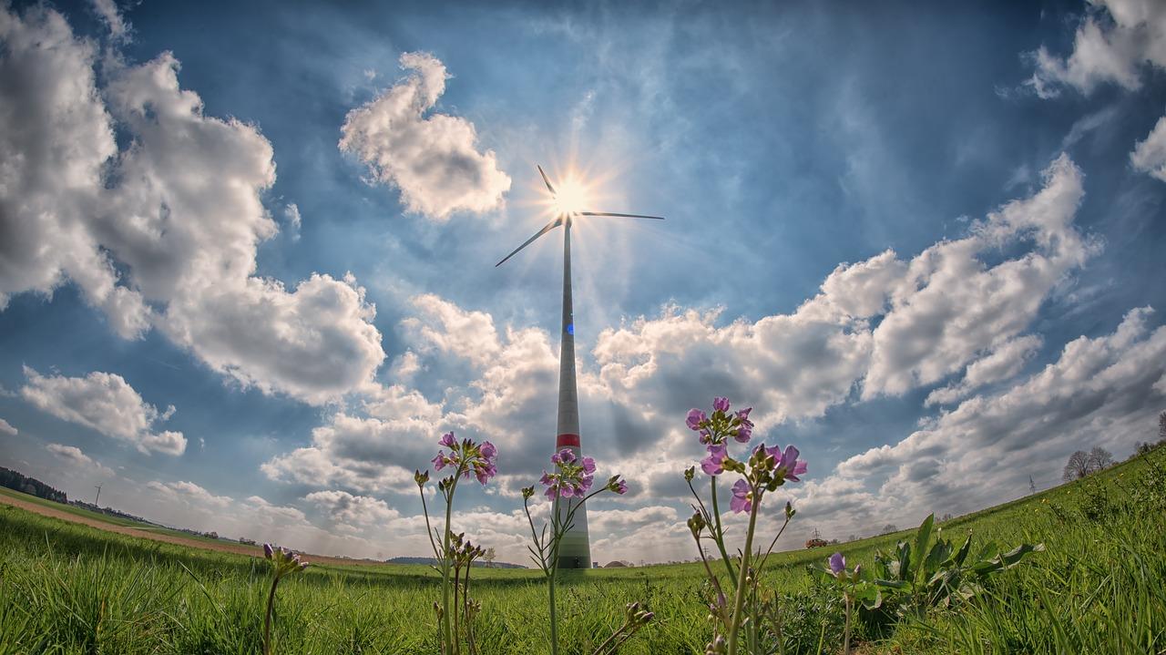 日本の再生可能エネルギーの現状と今後の普及について