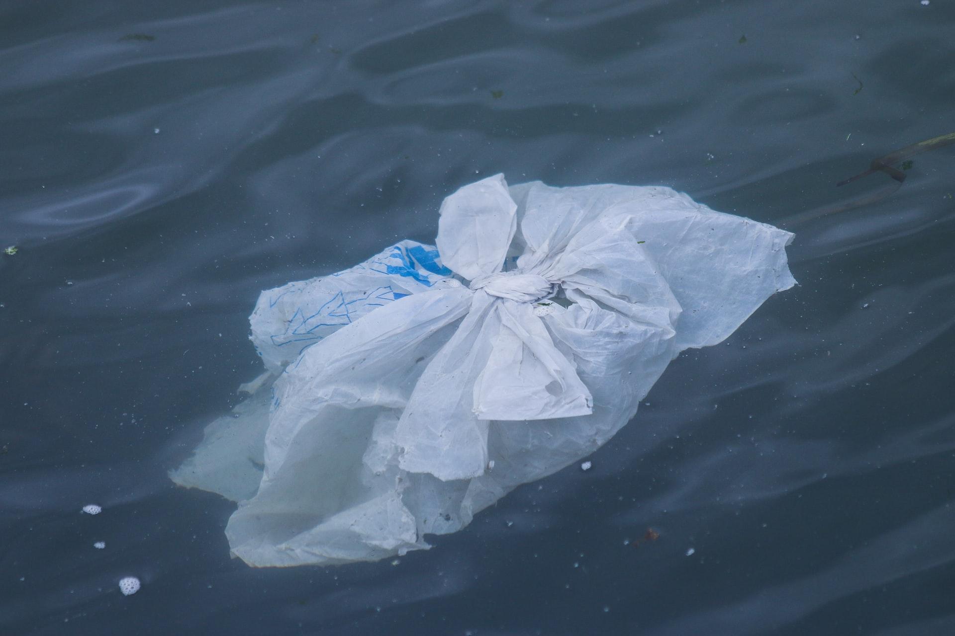バイオマスレジ袋の問題点