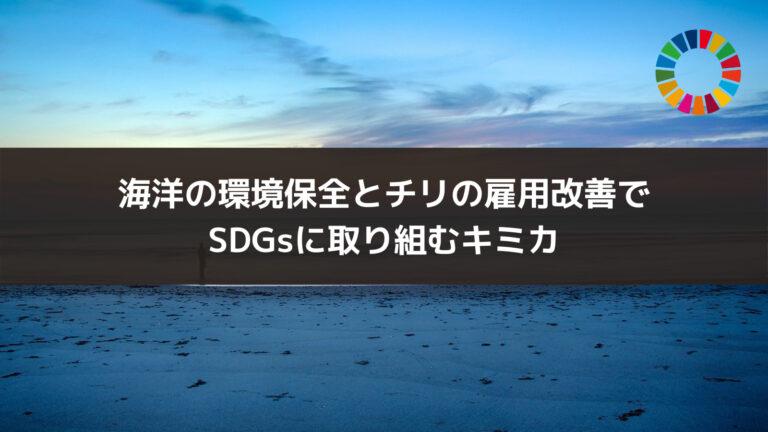 海洋の環境保全とチリの雇用改善でSDGsに取り組むキミカ