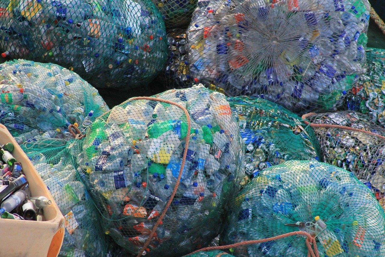 SDGs目標14「海の豊かさを守ろう」の取り組み例