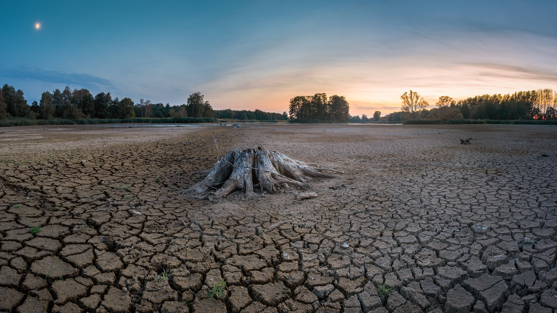 干ばつが深刻な国について
