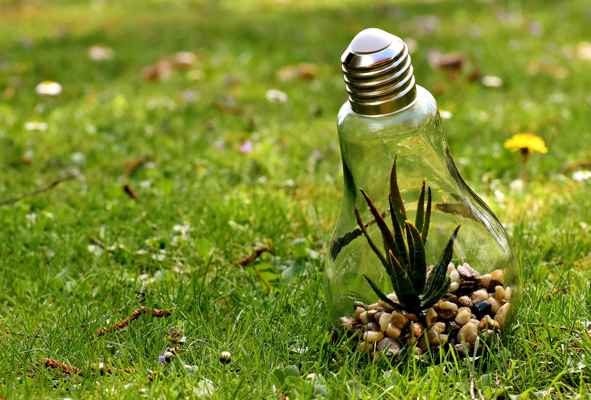 環境問題を解決するためにできることとは?