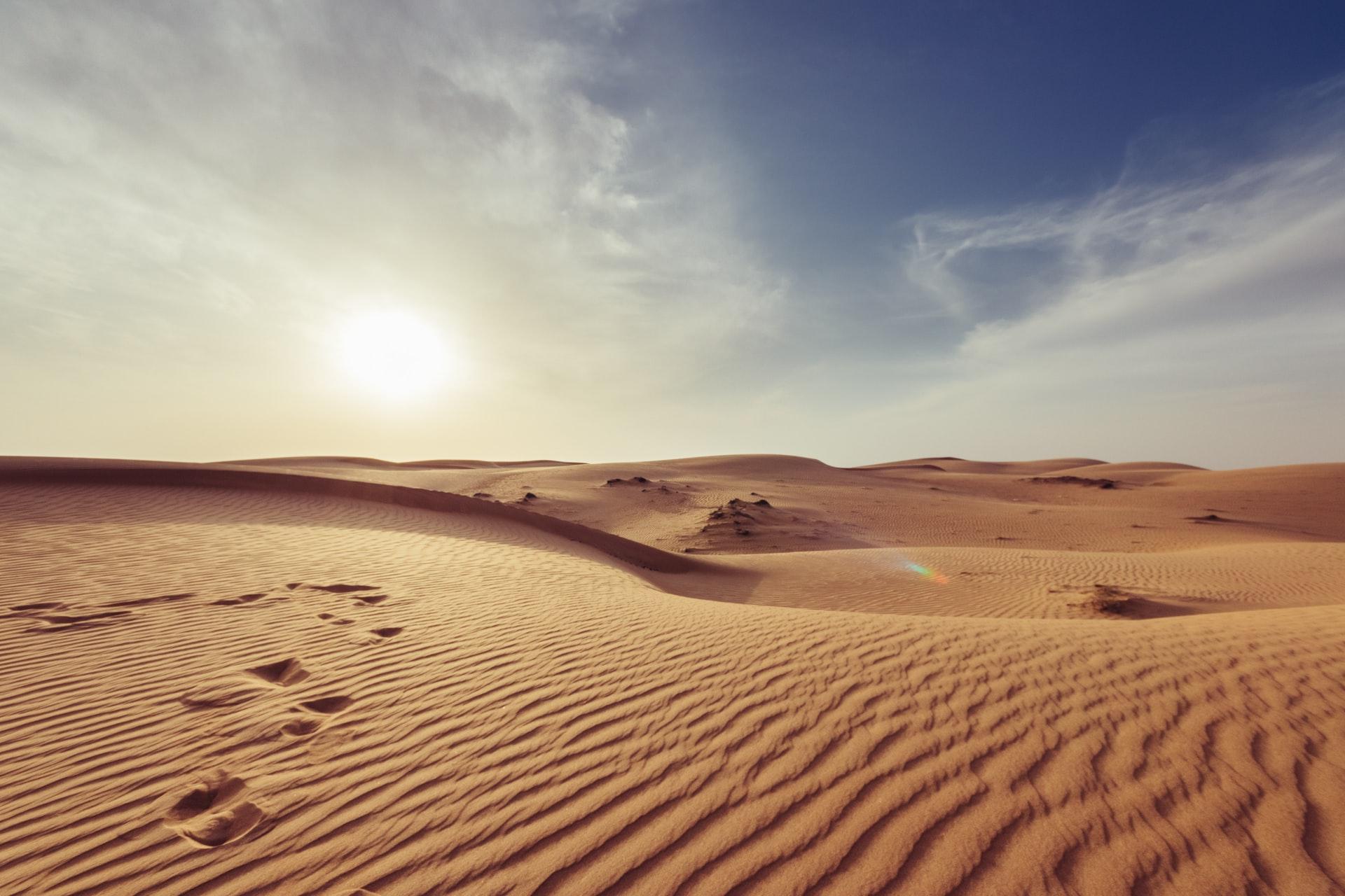 砂漠の種類