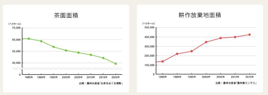 茶産地育成事業のグラフ