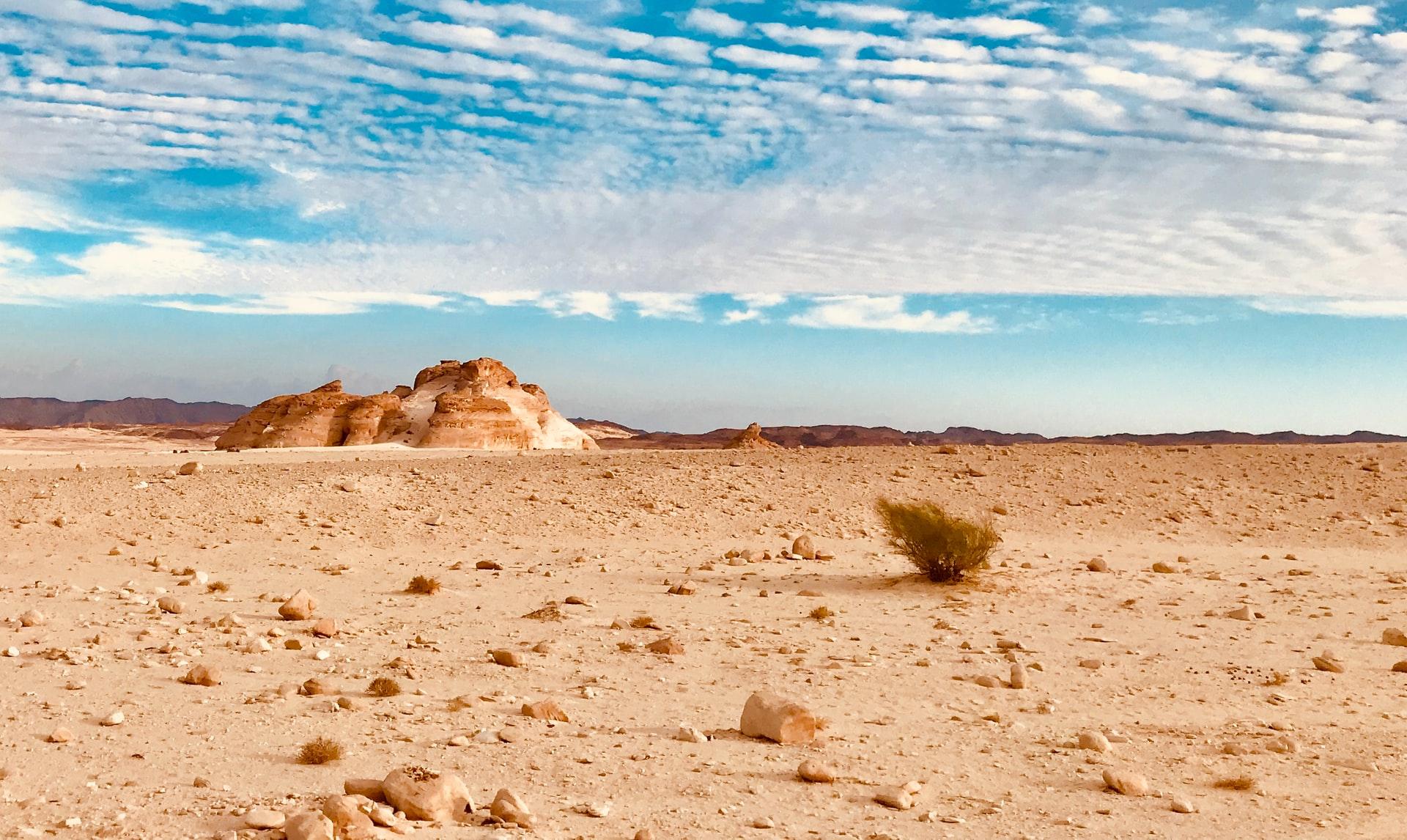 世界の砂漠化の現状