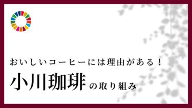 小川珈琲のSDGsに対する取り組みをご紹介!おいしいコーヒーには理由がある!